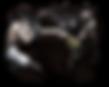 MMA Website Design