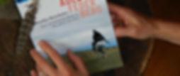 Buch Adler Feder Berg