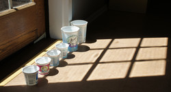 Yogurt containers, traslucent in the sun