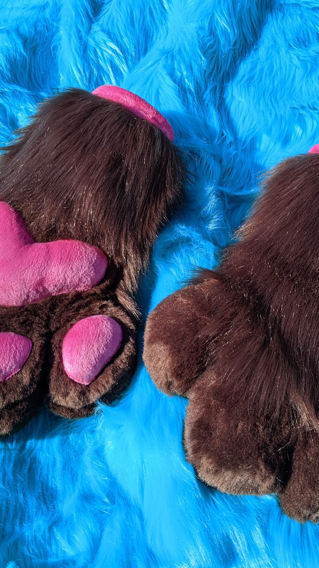 Brown and pink paws