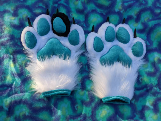 Black white and teal paws