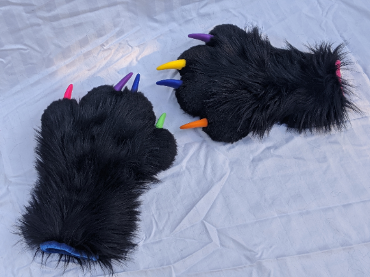 Black and rainbow paws