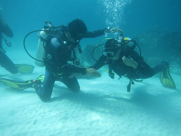 Open Water Diver Course.jpg