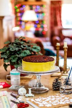 Making of Christmas Cake Tortology.jpg