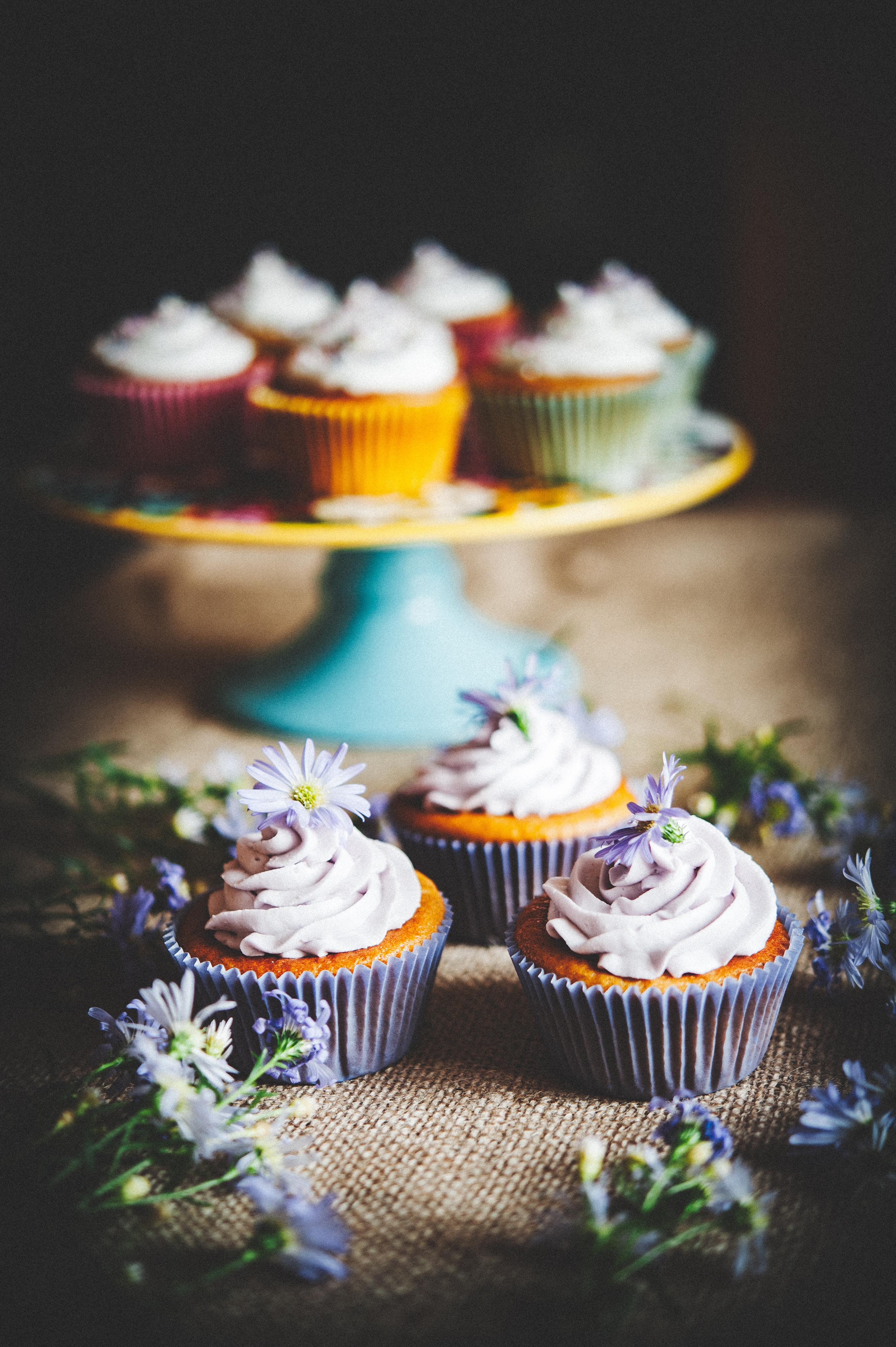 Pumpkin Cupcakes Tortology