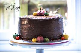 Mikey's Birthday Cake Tortology