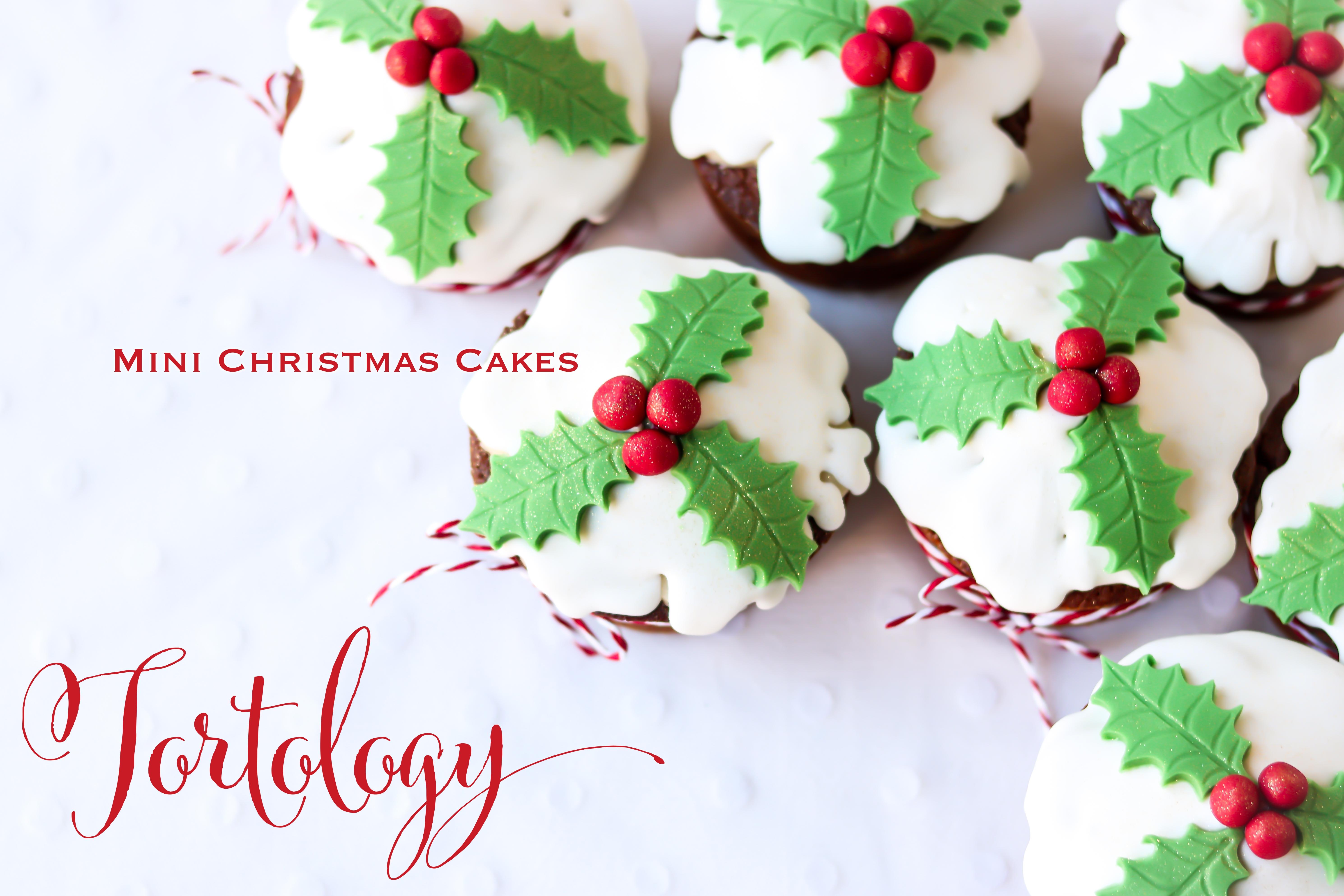 Christmas Cakes Tortology Maya Sapone