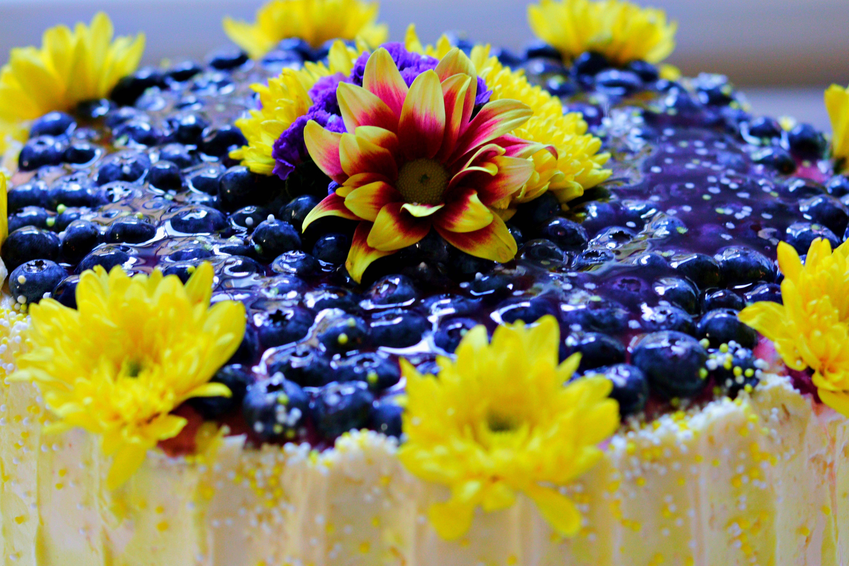 Lemon Blueberry Cake Tortology E17