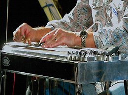 Pedal_steel_3-300x224.png