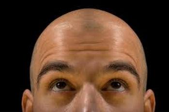 scalp wax.jpg