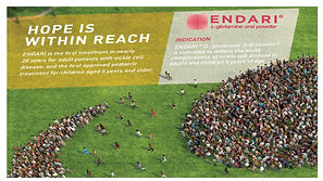 Endari Sales Slide pic.jpg