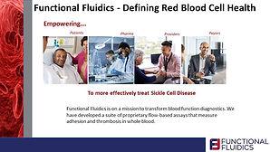 Functional Fluidics - slide pic.jpg