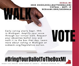 2020 SCMWalk Ballot to the box.jpg