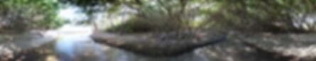 River_A.jpg