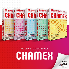 G3-10-02-21-ChamexColorido.png