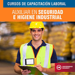Auxiliar en Seguridad e Higiene Industrial