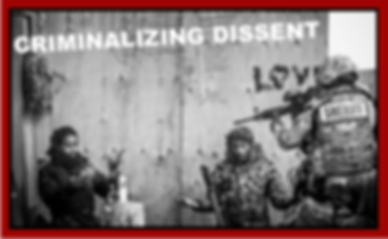 Criminalizing Dissent Red.png