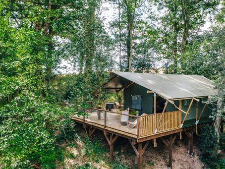 The best 'glamping' staycations in Wales from a sleek shipping container to a treehouse...