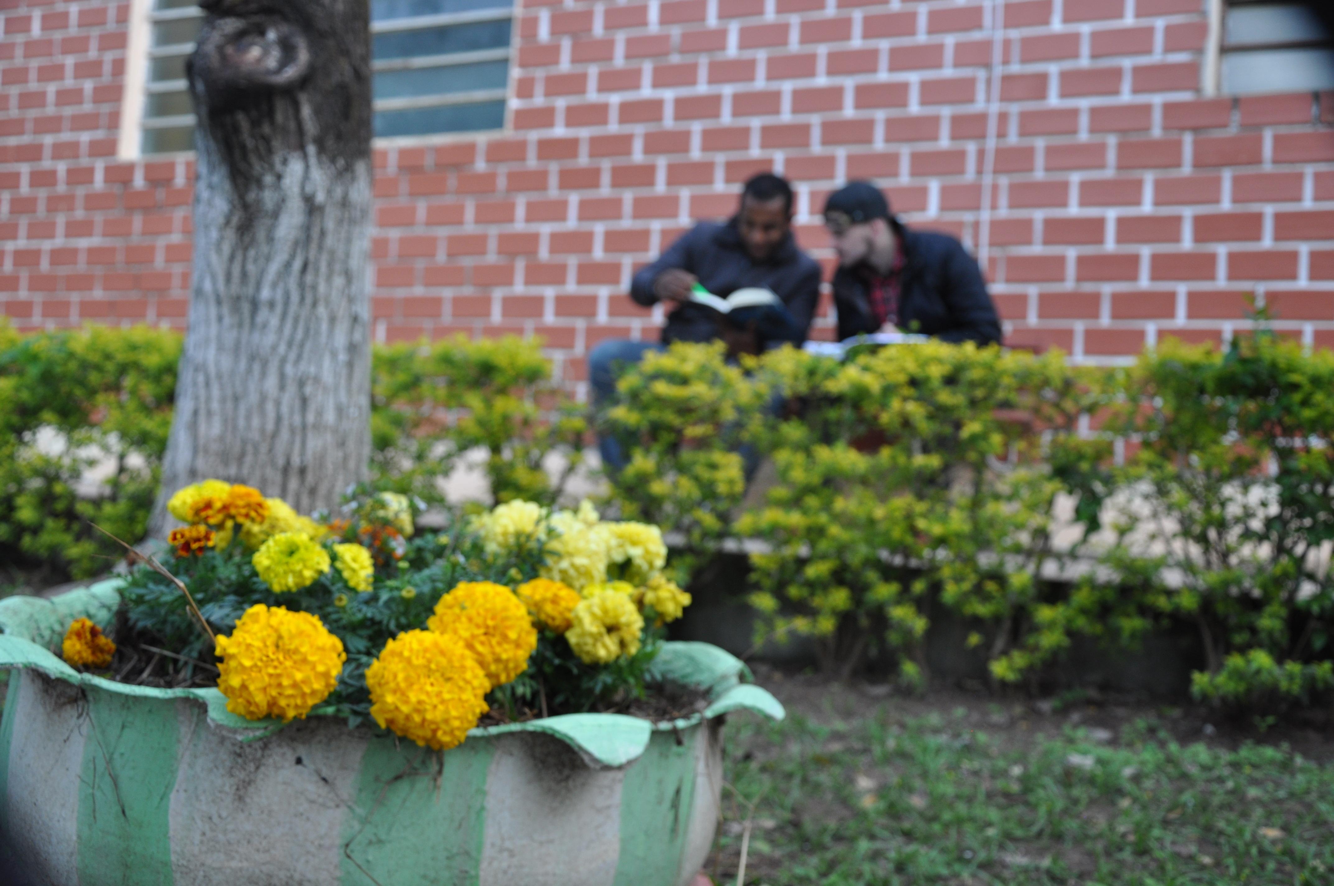 alunos frente 2