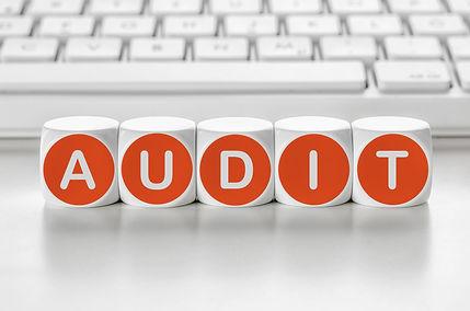Audit gratuito.jpg