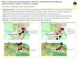 Графический постер Кашкаров П.А..jpg