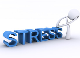 ProLog: Stress is Stress