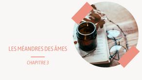 Les Méandres des Âmes (Par-delà les mots T.1) - Chapitre 3