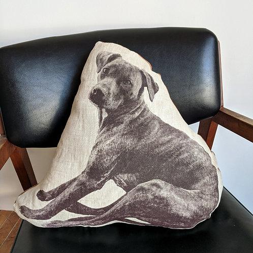 Pepita Pillow