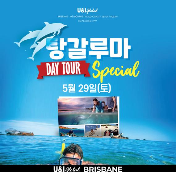 2021May_Tangaloom-daytour-kor-SQ.jpg