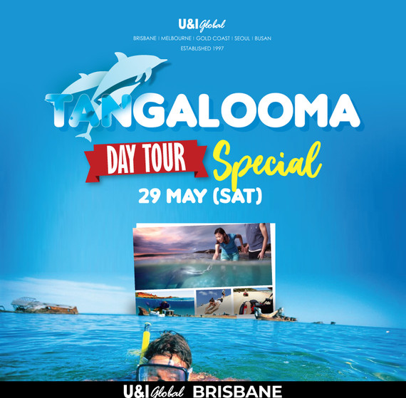 2021May_Tangaloom-daytour-SQ.jpg