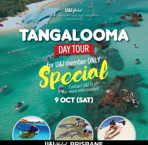 2021Oct_Tangaloom-daytour-SQ.jpg