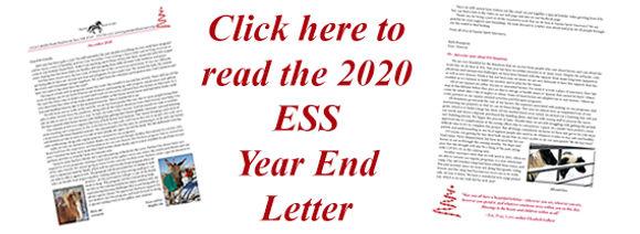 Holiday mailing thumbnail.jpg