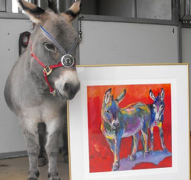 Bindy, Milagro Animal Award winning donkey