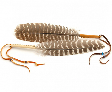 Turkey Smudging Feather Fan