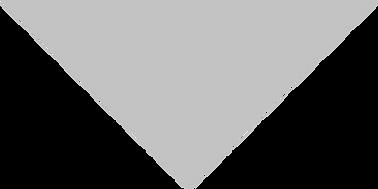 HD_HousholdIcon_Split-Roof-Grey195_4x.png