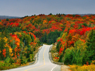 5 Best Fall Foliage Destinations