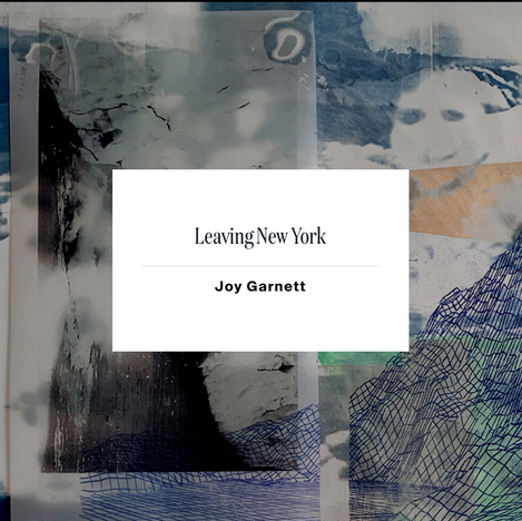 Evergreen Review, Fall 2020 Leaving New York Joy Garnett Art by Nazanin Noroozi