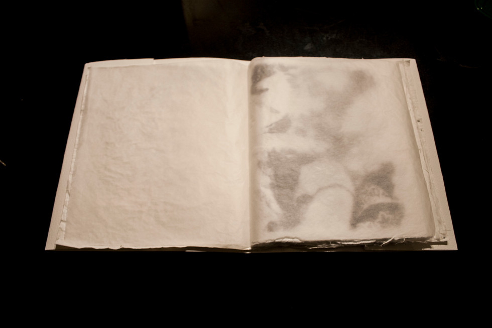 15.book of loss. page10.jpg