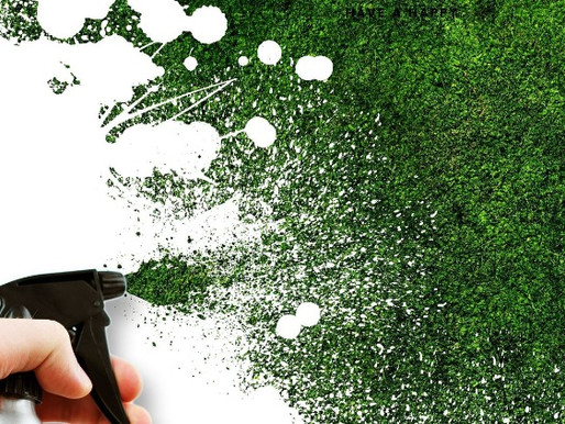 Green marketing VS Greenwashing: una falsa tintura di verde