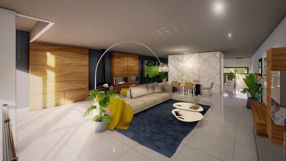 Modern House living room