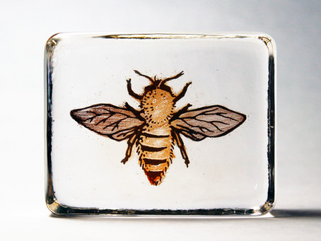 Glass Bee Blocks
