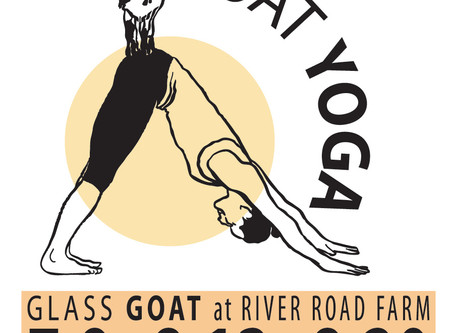 Glass Goat Yoga
