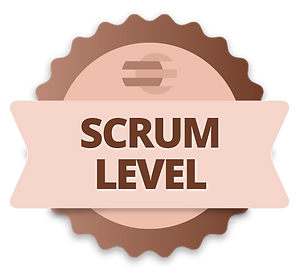 scrum_level.png