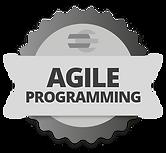 agile_programming.png