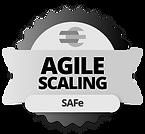 agila-scaling_safe.png