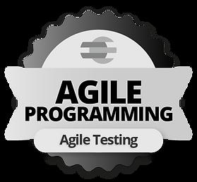 agile-programming-agile-testing.png