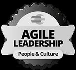 agile-leadership-people.png