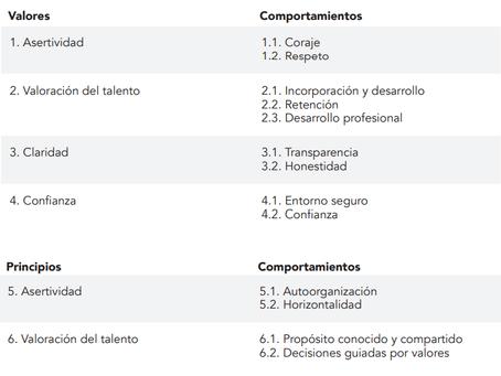 9na Cápsula: Medición Madurez Ágil | Dimensión Organizativa.