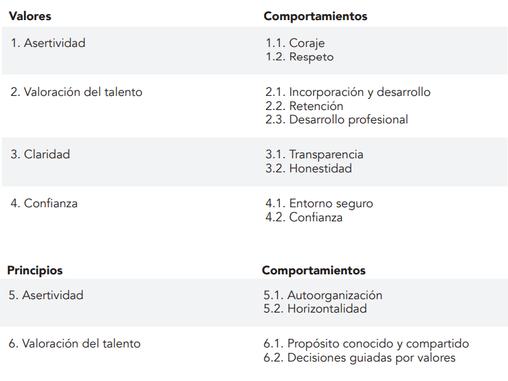 9na Cápsula: Medición Madurez Ágil   Dimensión Organizativa.