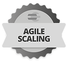 agile_scaling.png